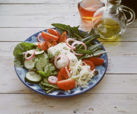 Griechischer Salat mit Spinat