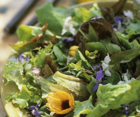 Grüner Salat mit essbaren Blüten