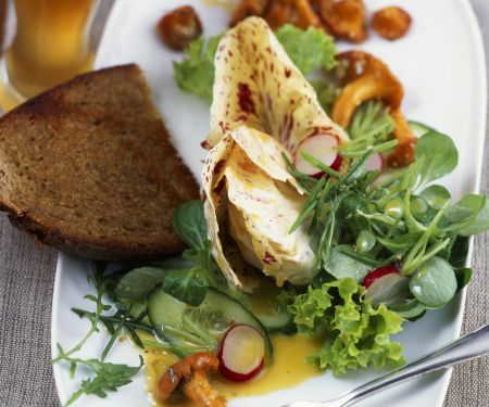 Grüner Salat mit Pfifferlingen und Weißbier-Vinaigrette
