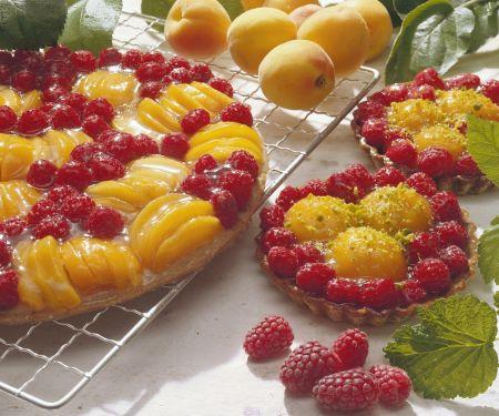 Himbeer-Aprikosen-Kuchen