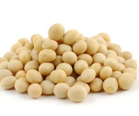 Senkt Soja die Cholesterinwerte?