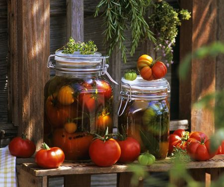 In Öl marinierte Tomaten