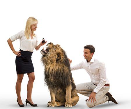 intueat bei Die Höhle der Löwen