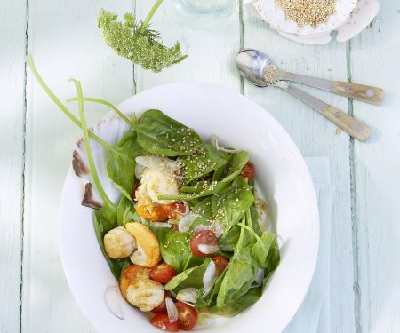Jakobsmuscheln mit Salat aus Spinat