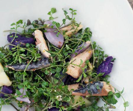 Kartoffe-Kräutersalat mit Fisch
