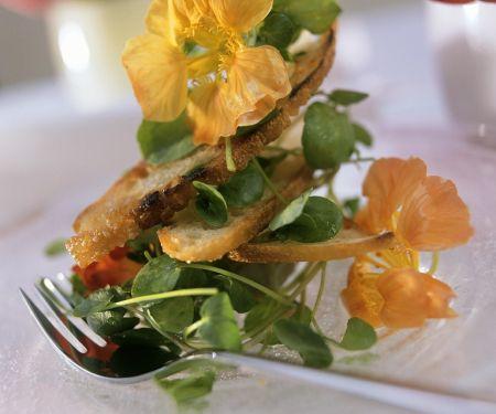Kressesalat mit Brotchips