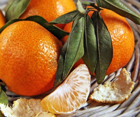 Mandarinen regen den Stoffwechsel an
