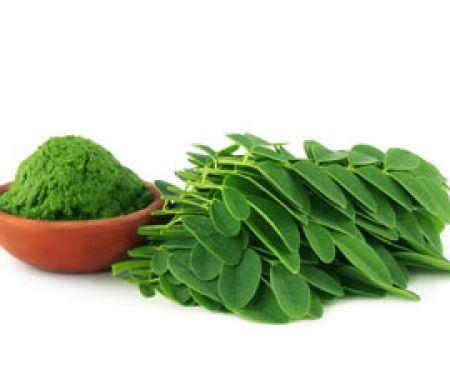 Moringa-Blätter © Swapan - Fotolia.com