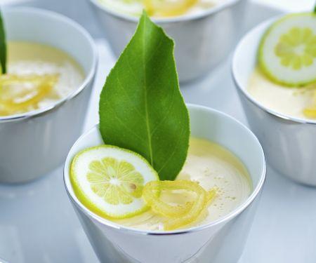 Panna cotta mit Limette