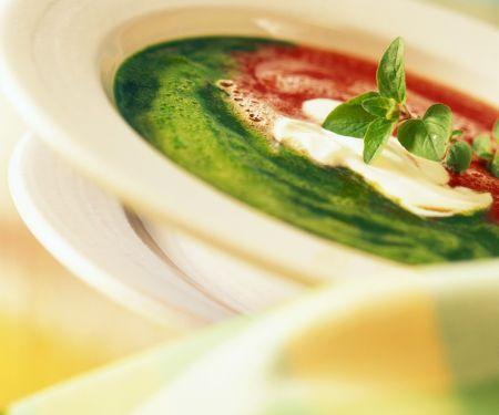 Rot-Grüne Cremesuppe