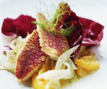 Rotbarbe mit fruchtigem Fenchelsalat
