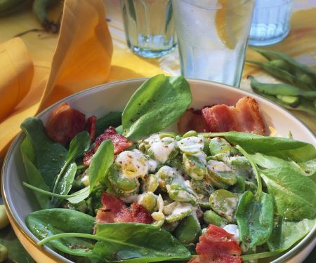 Sauerampfersalat mit dicken Bohnen und Bacon