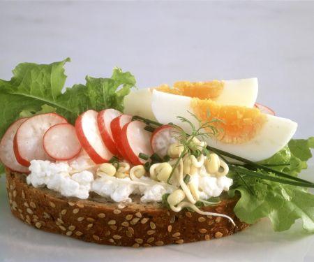 Scheibe Vollkornbrot mit Hüttenkäse, Radieschen, Sprossen und Ei