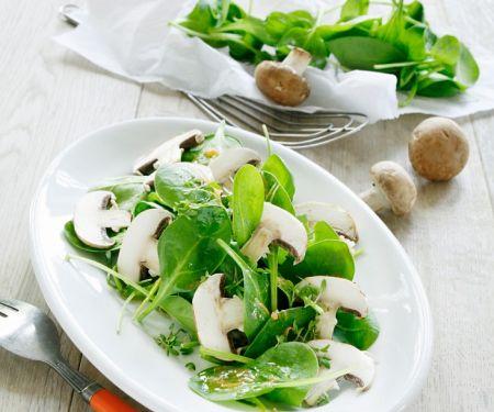 Spinat-Pilzsalat