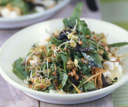 Spinatsalat mit Linsen und Schafskäse