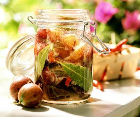 Stachelbeer-Zwiebel-Chutney