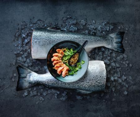 Tataki aus norwegischem Lachs
