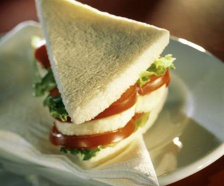 Tomaten-Mozzarella-Sandwich