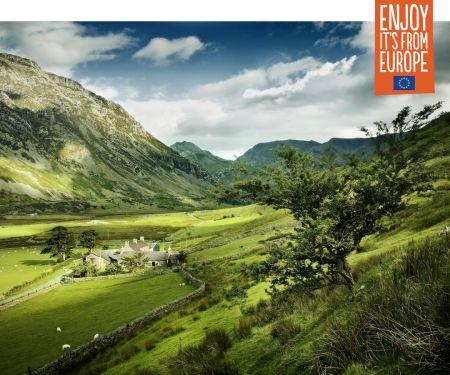 Walisisches Lammfleisch: Lammcurry