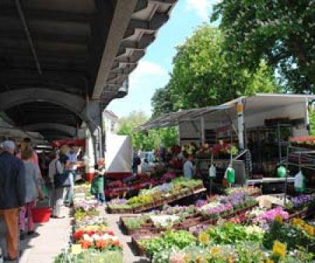 Welcher Wochenmarkt ist der beste?