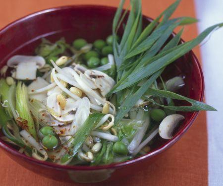 Würzige Gemüsesuppe mit Sprossen von Mungbohnen
