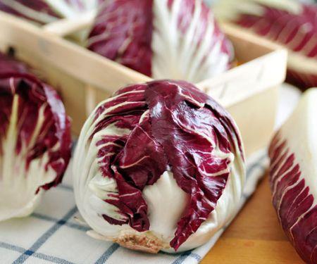 Zichorien: bitterer Salat-Genuss
