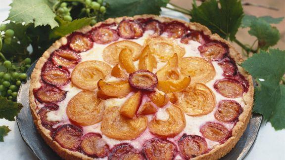 Rezept: Aprikosen-Pflaumen-Kuchen