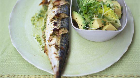 Rezept: Makrele vom Grill und Avocadosalat