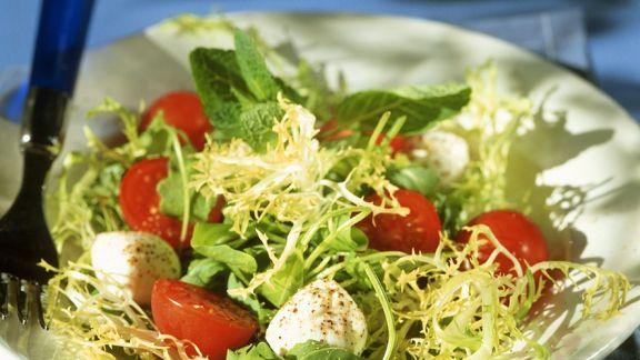 Rezept: Blattsalat mit Tomaten und Mozzarella