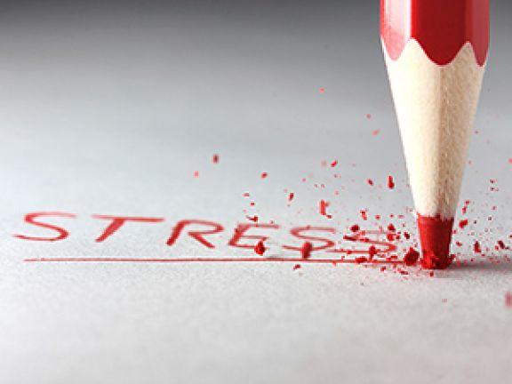 Machen Sie den Stresstest.