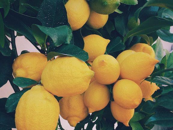 Haarmasken Zitrone