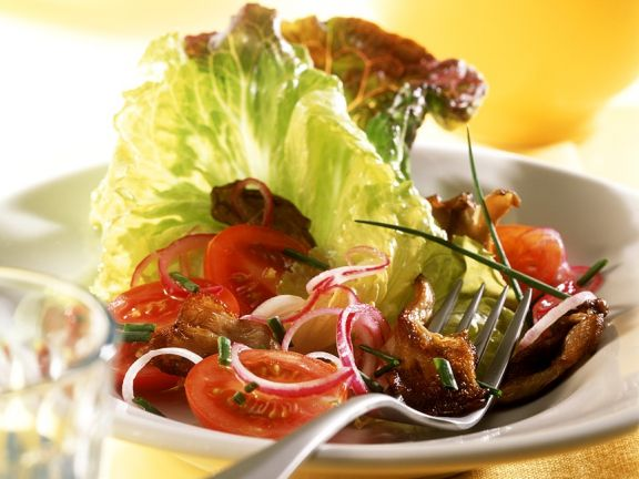 Austernpilze mit Bataviasalat und Tomaten
