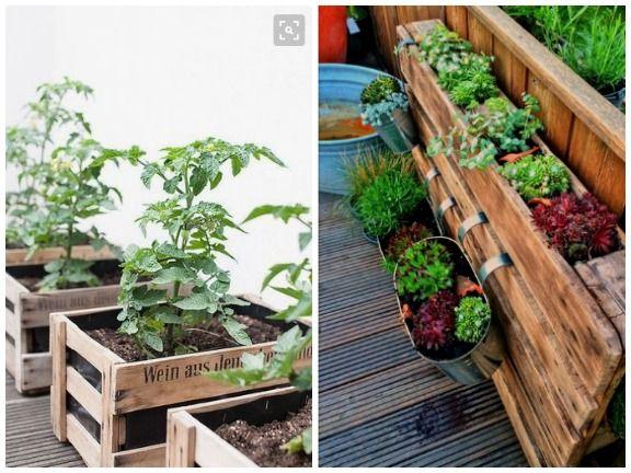 Balkongarten Ideen Gemüse Auf Dem Balkon Anbauen Eat Smarter