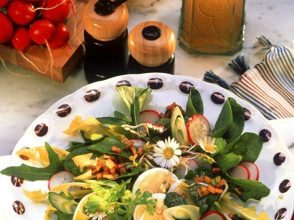 Blattsalat mit Ei und Radieschen