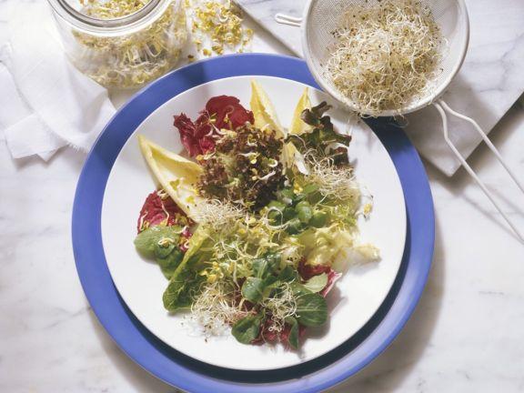 Blattsalat mit Gorgonzoladressing