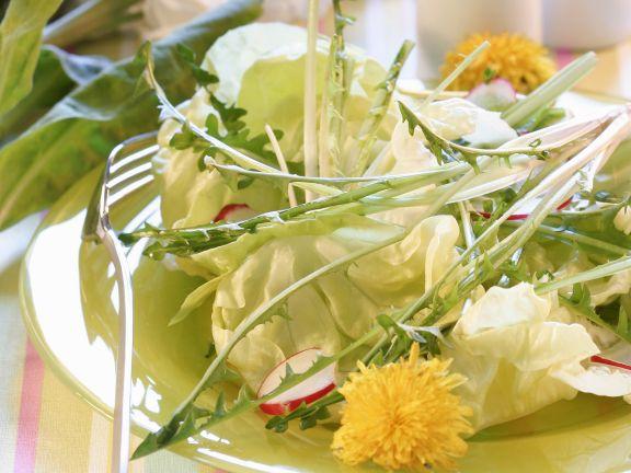 Blattsalat mit Löwenzahn und Radieschen