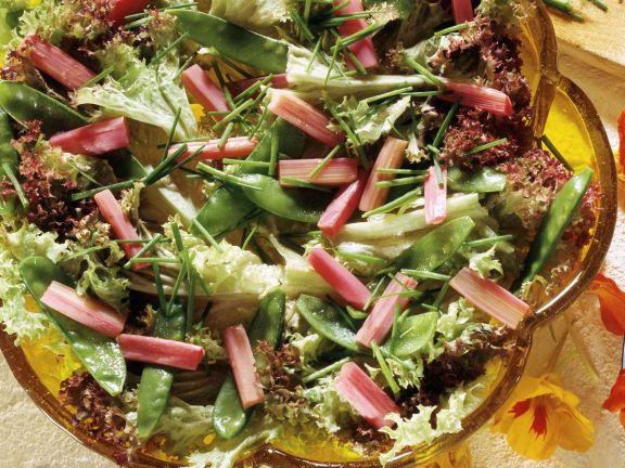 Blattsalat mit Rhabarber