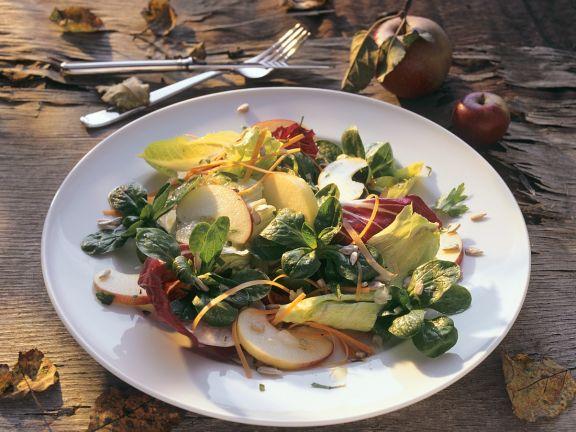 Bunter Blattsalat mit Apfel