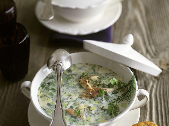 Cremige Suppe mit geräucherter Forelle, Porree, Dill und Kerbel