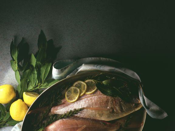 Dorade mit Mittelmeerkräutern und Zitrone