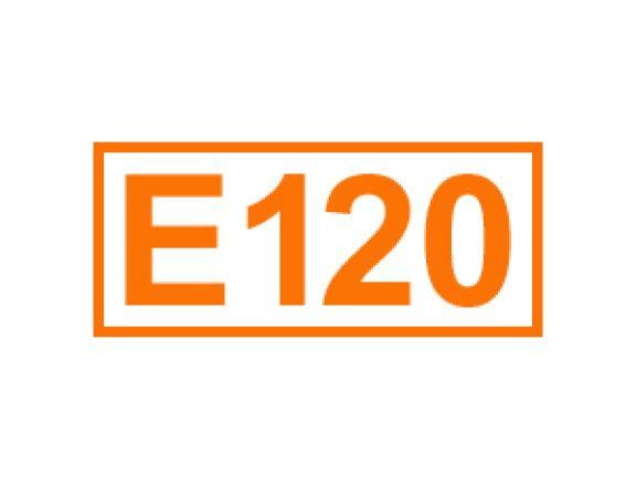 E 120 ein Farbstoff
