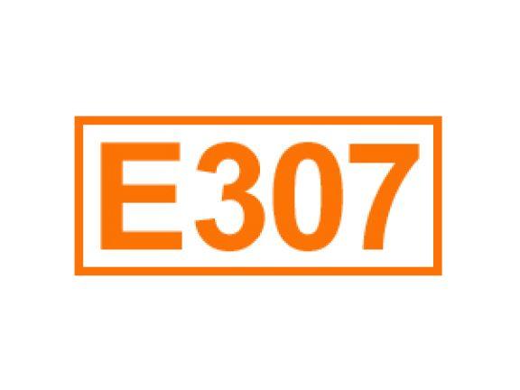 E 307 ein Antioxidationsmittel