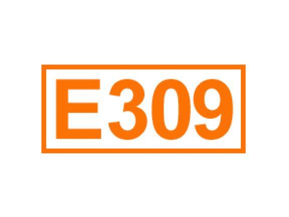 E 309 ein Antioxidationsmittel