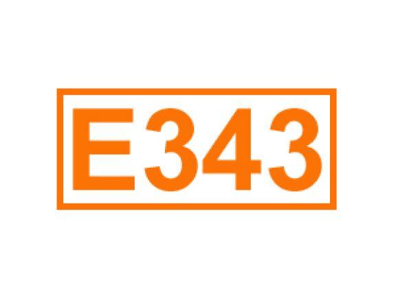 E 343 ein Säureregulator