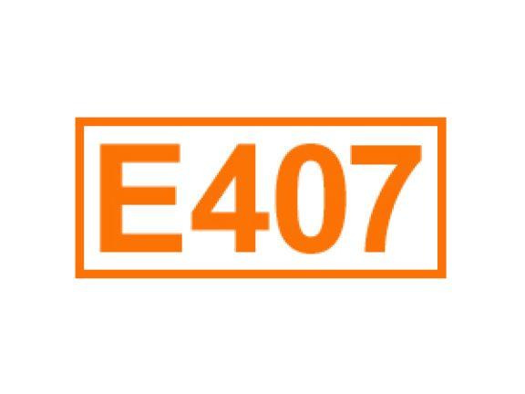 E 407 ein Geliermittel