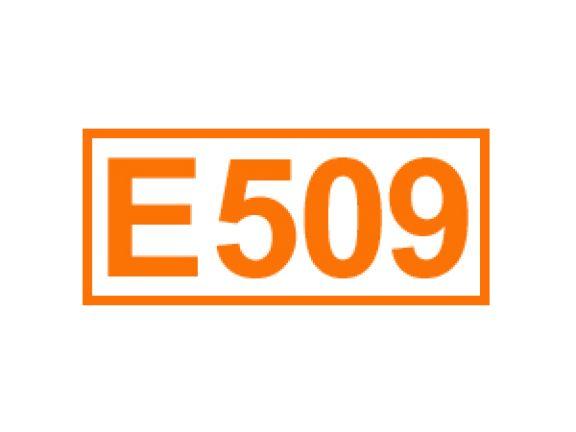 E 509 ein Festigungsmittel