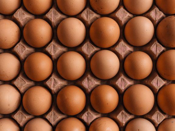 Eier Produktrückruf