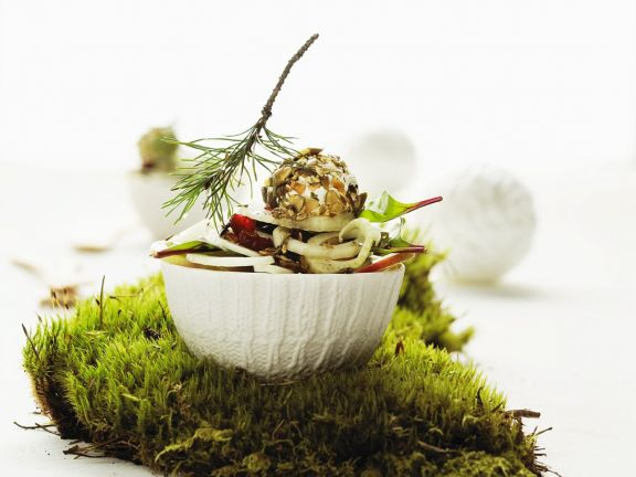 Fenchelsalat mit Birne, Cranberries und Frischkäse