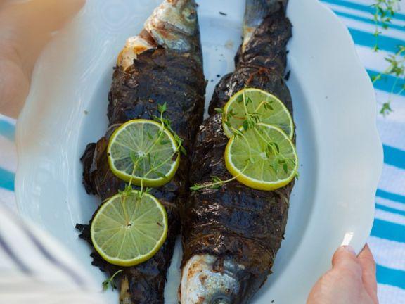 Fisch in Weinblättern gegrillt