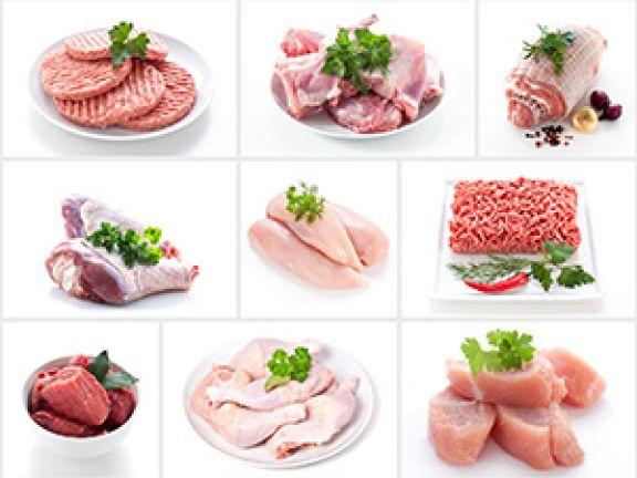 Fleisch Wissensstrecke